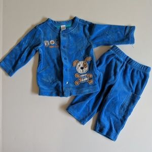 Other - Dog Gone Cute blue velour outfit
